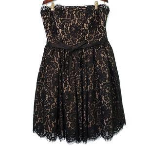 Robert Rodriguez Black Lace Strapless Dres…